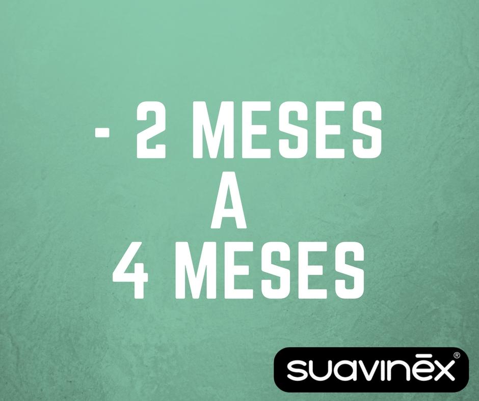 1) - 2 a 4 MESES